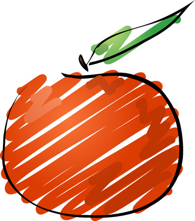 Tangerine fruit, hand drawn colored lineart illustration  rough sketchy coloring illustration