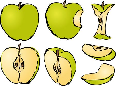 halved: Isometric 3d illustrtion of apples lineart hand-drawn look, bitten, core, halved, and quartered