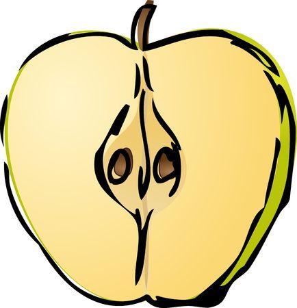 Sliced half green apple isometric illustration golor gradient lineart hand-drawn sketch Stock Illustration - 2529364