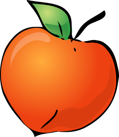 Sketch of a peach. Hand-drawn lineart look illustration Vector