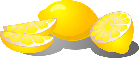 Illustration of a whole lemon, lemon segments, and sliced in half Vector
