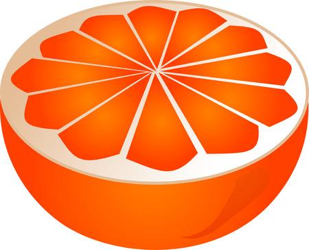 orange cut: Orange reducido a la mitad isomtric ilustraci�n degradado de color
