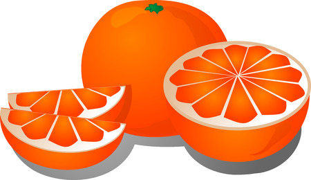 orange cut: La ilustraci�n de corte de naranja de corte de naranja en la mitad y las secciones