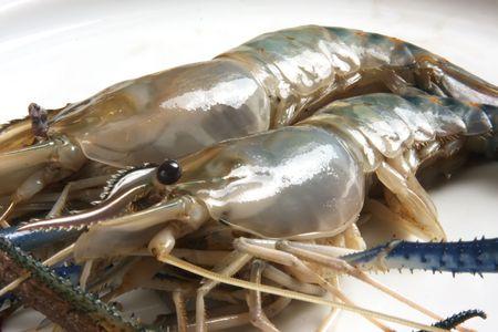 unpeeled: Whole fresh raw prawns in shell unpeeled