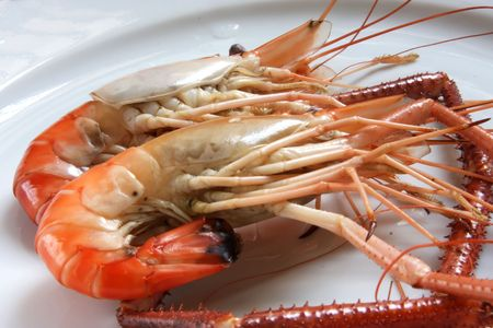 Whole fresh raw prawns in shell unpeeled photo