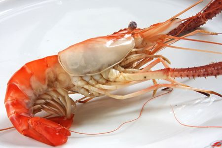 Whole cooked prawn in shell photo