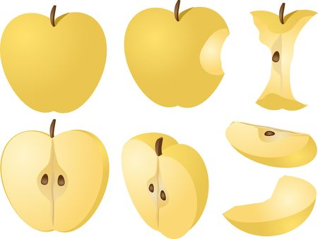 halved: Isometric 3d illustration of yellow apples, bitten, core, halved, and quartered