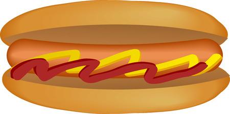 Hotdog illustration, sausage between buns with ketchup and mustard Vector