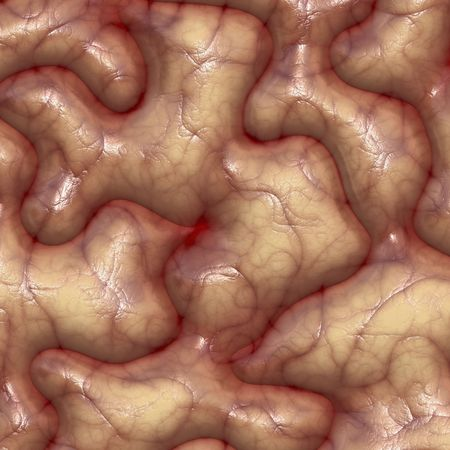 wrinkles: Brain texture with veins and wrinkles rendered illustration Stock Photo