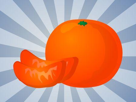 Orange fruit, whole and individual segments, illustration illustration