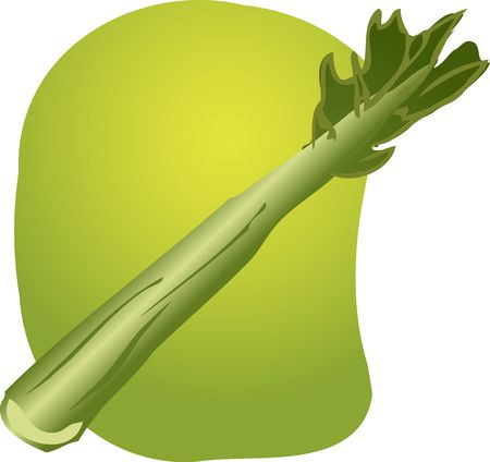 celery: Sketch of a celery. Hand-drawn lineart look illustration