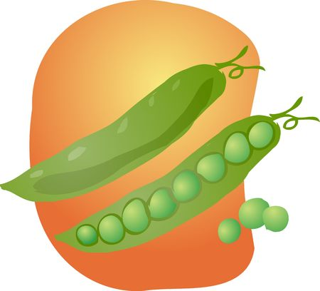 shelled: Sketch of peas in a pod Hand-drawn lineart look illustration Stock Photo
