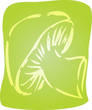button mushroom: Sketch of a mushroom. Hand-drawn lineart look illustration Stock Photo