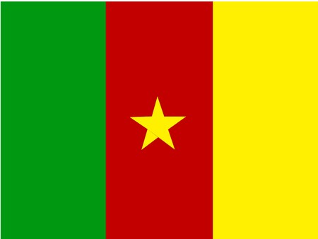 cameroon: Flag of Cameroon, national country symbol illustration Stock Photo