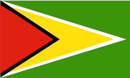 Flag of Guyana, national country symbol illustration Stock Illustration - 3963972