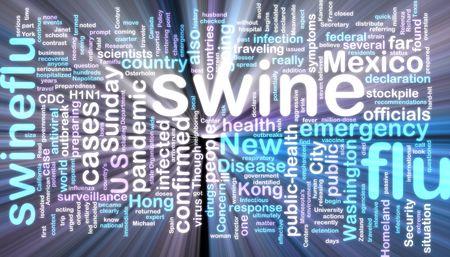 Word cloud concept illustration of swine flu glowing neon light style Stock Illustration - 4826360