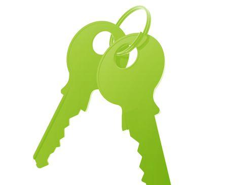 keyring: Keys on keyring illustration glossy metal style isolated