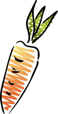 Carrot illustration, rough sketchy hand drawn style illustration