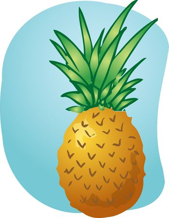 pine apple: Sketch of pineapple fruit. Hand-drawn lineart look illustration