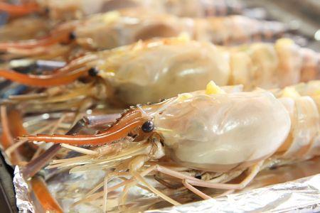 Raw langoustine prawns arranged prepared for grilling photo
