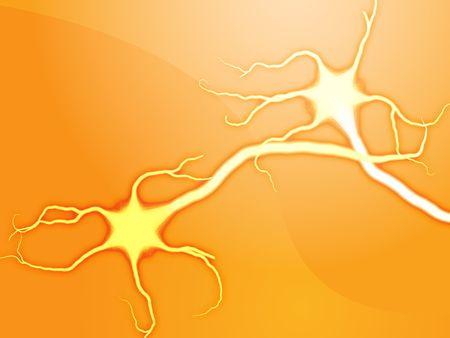 cellule nervose: Illustrazione del neurone di cellule nervose astratta rendering grafico