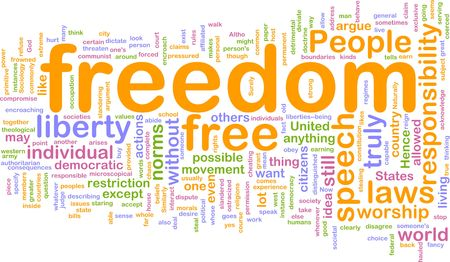 norms: Word cloud concept illustration of  freedom liberty