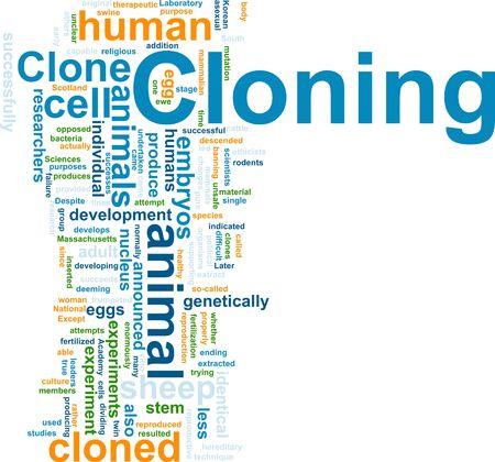 clonacion: Ilustraci�n de concepto de nube de Word de la clonaci�n de clon