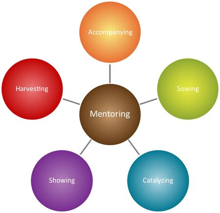 Mentoring qualities Management business strategy concept diagram illustration Stock Illustration - 6708981
