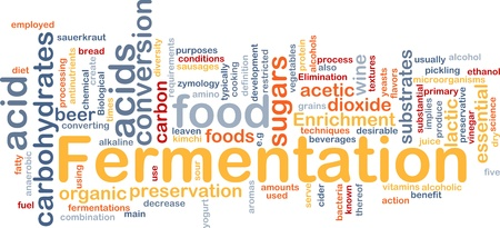 fermentation: Background concept wordcloud illustration of fermentation food process   Stock Photo