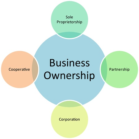 ownership: business ownership diagram management strategy concept chart illustration