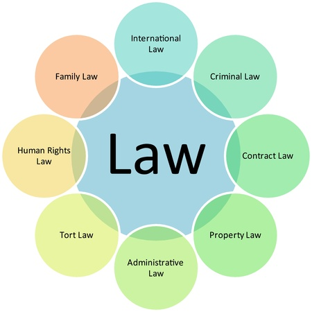 human rights: Law practices business diagram management strategy concept chart illustration