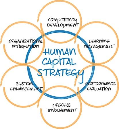 ressources humaines: Illustration de croquis du tableau blanc business capital humain diagramme gestion strat�gie