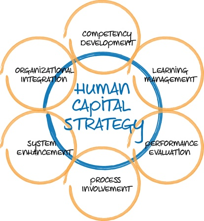 capital humano: Ilustraci�n de esbozo de pizarra de negocios de capital humano diagrama gesti�n estrategia
