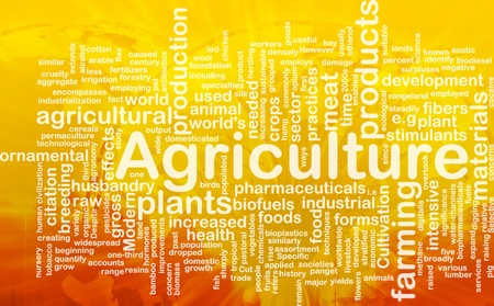 world agricultural: Word cloud concept illustration of agriculture farming international Stock Photo