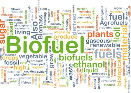 biomasa: Ilustraci�n del concepto de fondo de combustible renovable de biocombustibles
