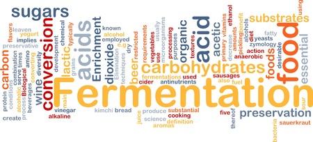 food preservation: Background concept wordcloud illustration of fermentation food process   Stock Photo