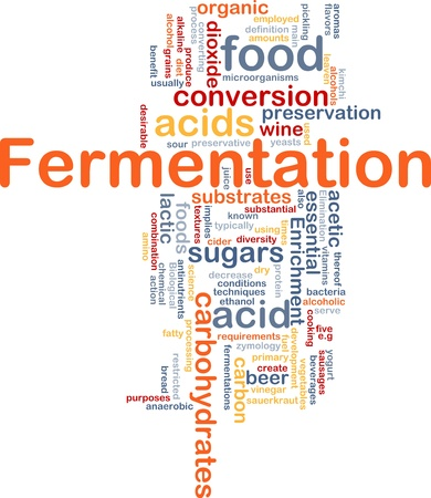 alkaline: Background concept wordcloud illustration of fermentation food process   Stock Photo
