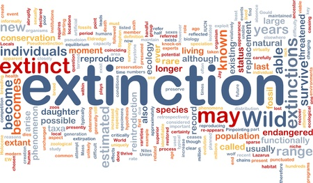 species: Background concept wordcloud illustration of species extinction event