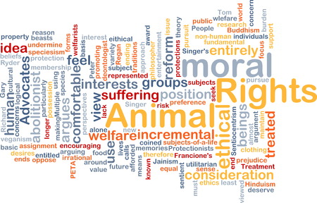 Background text pattern concept wordcloud illustration of animal rights