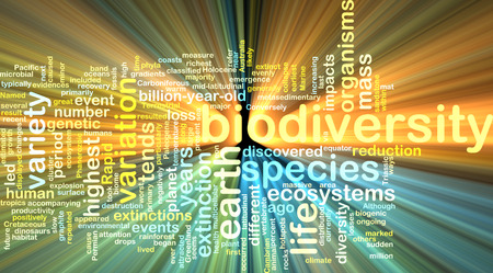 biodiversity: Background text pattern concept wordcloud illustration of biodiversity glowing light