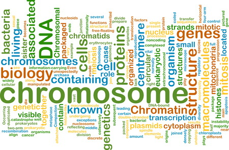 chromosomal: Background text pattern concept wordcloud illustration of  chromosome Stock Photo