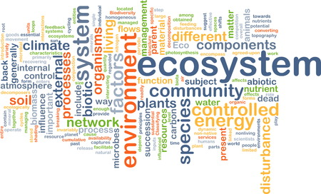ecosystem: Background text pattern concept wordcloud illustration of ecosystem