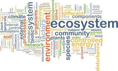 ecosistema: Texto concepto de fondo patrón Ilustración de wordcloud del ecosistema Foto de archivo