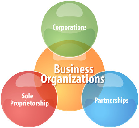 theoretical: business strategy concept infographic diagram illustration of business organizations types