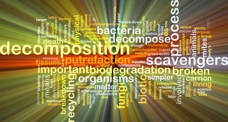 Background text pattern concept wordcloud illustration of decomposition glowing light