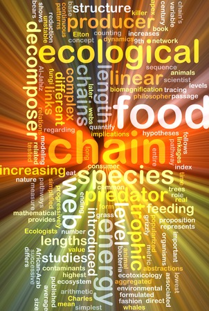 chain food: Background text pattern concept wordcloud illustration of food chain glowing light
