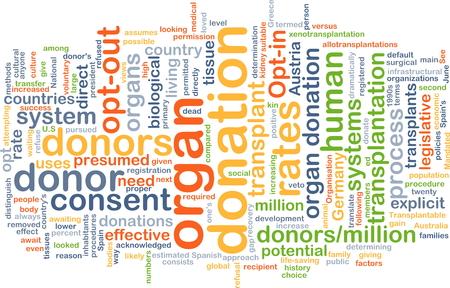 donacion de organos: Texto concepto de fondo ilustración modelo wordcloud de la donación de órganos