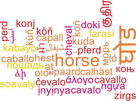 wordcloud: Background concept wordcloud multilanguage international many language illustration of horse