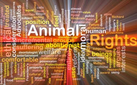 Background text pattern concept wordcloud illustration of animal rights glowing light