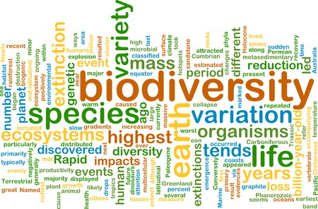 biodiversity: Background text pattern concept wordcloud illustration of biodiversity